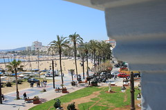 09042017-IMG_9330 (Nikita GM) Tags: froma window looking wishing wish beach tarragona catalonia relax relaxed tv3 cars people vehicles palm tree grass trees city litoral hite green blue coloured colours coloutful