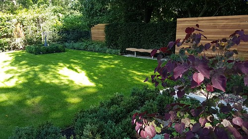 Landscape Design and Construction Wilmslow - Modern Garden Design Image 22