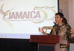 MEMBERS OF DIASPORA URGED TO SAFEGUARD HERITAGE (JIS)