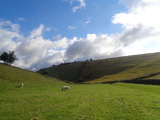 Deep Dale near Sheldon, Derbyshire