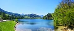 "Alpsee (Steve only) Tags: nexus 5x cellphone landscape sky germany alpsee lake schlosneuschwanstein schlossneuschwanstein neuschwansteincastle ""new swan castle"""