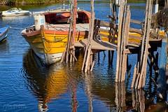 Recuerdos de verano - Rio Llico (Patagonia Chile) (Noelegroj (8 Million views+!)) Tags: chile patagonia fresia river riollico regiondeloslagos chileanlakesdistrict verano summer reflections reflejos boat bote dock fluvial embarcadero agua water colorido colrofull
