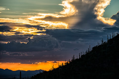 Sonoran Sunset (Amazing Aperture Photography) Tags: sky sunset clouds monsoon desert sonorandesert landscape beautiful colors cacti cactus pimacanyon tucson arizona nikon nikond800 tamron weather silhouette saguaro