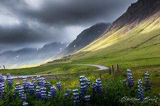 Iceland 2015 - Westfjords