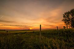 HFF (hey ~ it's me lea) Tags: hff sunset rural prairie