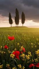 Tuscany details!! 😍 #like #follie #Montalcino #tuscany #Italy #loveit #travel #discover #enjoy #nature #landscape 👍 (borghettob) Tags: like follie montalcino tuscany italy loveit travel discover enjoy nature landscape