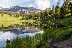 Anglų lietuvių žodynas. Žodis lake trout reiškia ežero upėtakių lietuviškai.