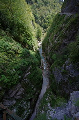 View from above (Jumpin'Jack) Tags: topside view down intothe gorge tolminska korita stream river creek deep below steep hill slopes trees grass moss water wacky perspective ultrawide lens sigma 816mm
