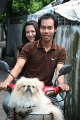 young couple with their dog (the foreign photographer - ฝรั่งถ่) Tags: young couple man woman motorcycle dog braces khlong thanon portraits bangkhen bangkok thailand canon kiss