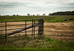 At The End (HFF) (13skies) Tags: fencefriday gate fence field look beingthere green farm growing hff happyfencefriday metalgate enter entrance exit horizon distance privateproperty