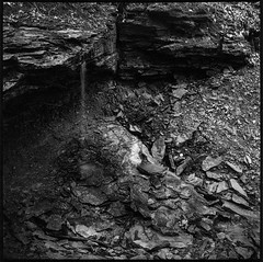 It takes just a drop (argentography) Tags: shades indiana midwesy yashica 124 rolleisuperpan erosion monochrome push
