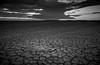Broome tidal plains, WA (Nicolas420) Tags: broome wa australia blackandwhite bw tide landscape dry