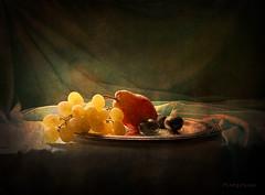 Still Life & Autumn Fruits (MargoLuc) Tags: autumn season fall fruits grapes pear plums red yellow soft light silver vassoio classic stilllife texture skeletalmess