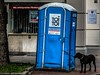 to walk the dog (blende9komma6) Tags: hannover germany canon ixus dog hund südstadt towalkthedog gassinggehen dix wc street restroom toilette pipi pinkeln geschäft gehen walk