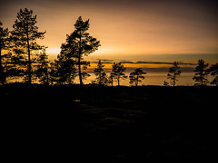 (thevictorexperience) Tags: sunset photography orange westcoast finland beautiful sky sea trees clouds cloudy lumix microfourthirds micro34 relaxing meditation smooth outdoor explore coast beach ocean dreamscape nature