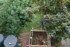 Looking Down on the Front Garden - August 2017 (basswulf) Tags: frontgarden compost compostbin d40 1855mmf3556g lenstagged unmodified 32 image:ratio=32 permissions:licence=c 20170829 201708 3008x2000 lookingdownonthegarden normcres oxford england uk garden