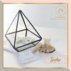 ✨SOPHIE GLASS BOX CONTAINER✨ (luxeova) Tags: luxeovaringbox terrarium terrariums glassbox wedding weddings ring terrariumlove ringholder homedecor weddingbox rusticwedding ringbox ringbearer geometricbox jewelrybox homedesign jewellerybox glassterrarium glassflowers candleholder weddingrings candleholders glassvase glassplanter geometricdecor geometricterrarium australianwedding ukweddings londonwedding