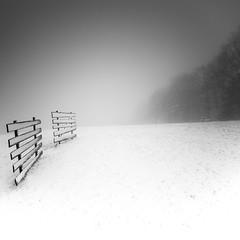 unleashed (ArztG.|Photo) Tags: snowscape snow storm unleashed fine art minimalism austria atmosphere arztg|photo yup
