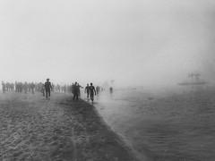Exodus~ Germany (~mimo~) Tags: blackandwhite moody shotoniphone iphone7 street fog triathlon lake see xanten deutschland germany
