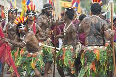 Jungle on the street (Photosightfaces) Tags: perahara perahaera perahera festival sri lankan lanka srilanka srilankan ambalangoda birthday events