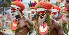 group orange hats (kthustler) Tags: goroka singsing papuanewguinea tribes huliwigmen mudmen