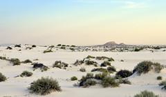 White Sands View (BongoInc) Tags: newmexico whitesandsnationalmonument chihuahuandesert desertsouthwest desertlandscape