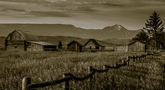 Monochrome, Farms at Mormon Row (sapere18) Tags: 2017 grandteton july mormonrow wyoming blackandwhite summer sunrise
