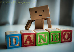 Danbo with his name (13skies (Physio)) Tags: windowlight wednesday danbo blocks buildingblocks colours colors curtains toys alphabet curious happy daytime daylight macro