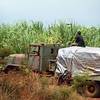 Colombian drug smugglers (Brian Howell) Tags: m923 amgeneralm923