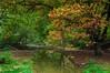 7 (okancan.kahraman) Tags: nature aydin didim antalya safranbolu karabük green sea macro shot