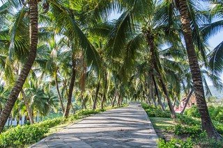 chiang mai - thailande 80