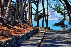 Morro Bay (MPnormaleye) Tags: trees bay water rock cliff california utata 24mm scenic nature park ocean inlet