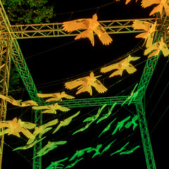 2017.08.27-Sun-ARM-GB17-1258 (Greenbelt Festival Official Pictures) Tags: andybmac greenbelt armackley boughtonhouse gb17 sunday commongood festival night official photoluminaticom goldenratio murmuration murmurationbynicolahaines
