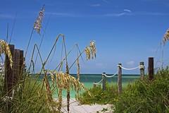 Indulging in Memories (Michiale Schneider) Tags: beach path sand gulfofmexico captivaisland florida landscape nature michialeschneiderphotography blue