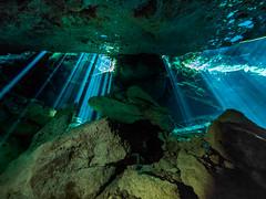 Cavern Light Show III (altsaint) Tags: 714mm chacmool gf1 mexico panasonic cavern caverndiving cenote scuba underwater