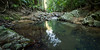 Rainforest pool (pbaddz) Tags: australia currumbincreek creek rocks rainforest goldcoast queensland springbrook national park world heritage mtcougal springbrooknationalpark worldheritagre