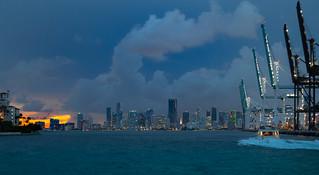 Miami Salute
