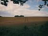 2017-08-03_11-41-09 (torstenbehrens) Tags: landschaft stolpe kreis plön schleswigholstein deutschland olympus ep1 digital camera