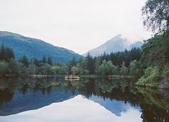 CNV00023 (SB_McAllister) Tags: fujica fujinon stx1 glencoe scotland filmisntdead lomography film 50mm