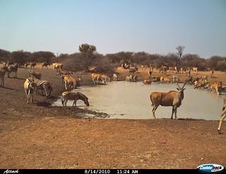 Namibia Luxury Hunting Safari 50