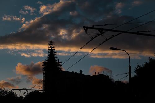 Evening silhouetes