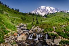 Edith Creek (Colleen Easley) Tags: edithfalls mountain mtrainier nationalpark snow water waterfall wildflowers