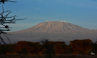 Beautiful Mt. Kilimanjaro at Sunrise - 7690b+