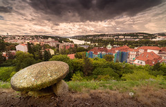 View from Vysehrad (Michele Naro) Tags: vysehrad prag prague praha tschechien czechrepublik vltava moldau nikond610 samyang14mmf28