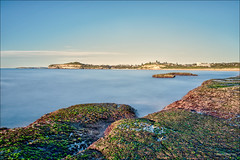 Quell the swell (JustAddVignette) Tags: algae australia beach clouds cloudysunrise dawn early landscapes longexposure monavale morning newsouthwales northernbeaches ocean rocks seascape seawater sky sunrise sydney water waves