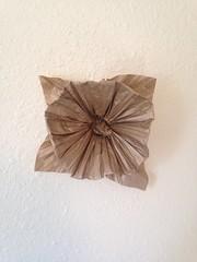 IMG_2077 (uqbarryn) Tags: jackson floderer crumpling crumple sculpture paper art origami flower plant