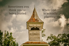 Planted (Back Road Photography (Kevin W. Jerrell)) Tags: faith quotes churchsteeples backroadphotography churches countryscenes abandoned nikond7200 daysgoneby inspirational unioncounty sharpschapel tennessee