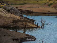 Paisaje (@rgosu) Tags: paisaje aire agua plantas arboles verde