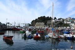 IMG_0658 (- Javi -) Tags: luarca asturias puerto mar paisaje verde sea landscape town city boat barcos ciudad españa