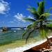 Paradise in Barbados